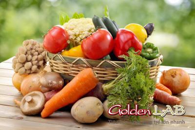 Probiotics trong thực phẩm tự nhiên