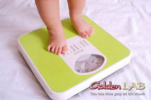 Vì sao bé ăn uống đầy đủ mà 3 tháng không tăng cân ?