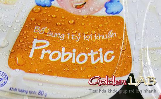 Vai trò của Prebiotic trong men vi sinh