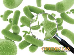 Probiotic là gì ? Tác dụng của Probiotic và Probiotic có ở đâu ?