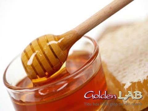Trị biếng ăn cho bé bằng B1 và mật ong có tốt không?