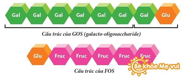 khai-niem-vai-tro-cua-prebiotic